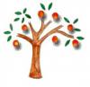 Orange Tree Events Ltd